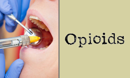 anesthesia-opioid course